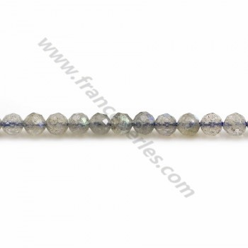 Labradorite Ronde Facette 4mm x 10pcs