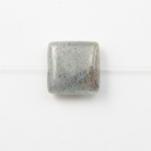 Labradorite Carré 10mm x 4pcs