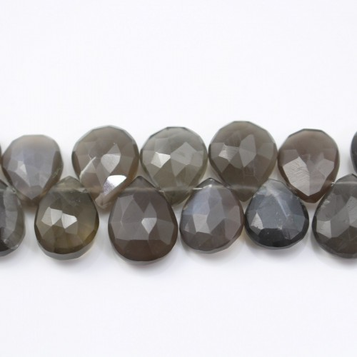 Moon stone teardrop flat faceted  8.5x11mm-9.5x13mm x 20cm