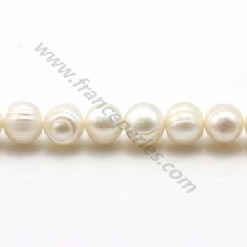 White round freshwater pearls on thread 9-10mm x 40cm