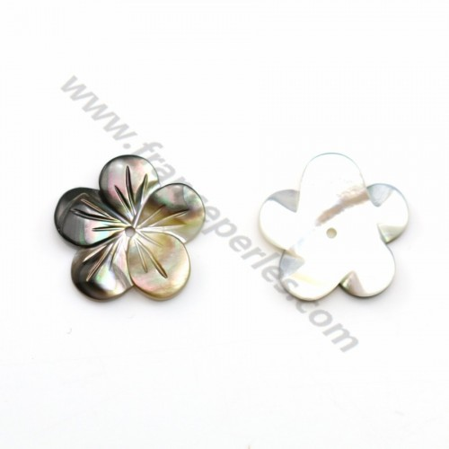 Gray mother-of-pearl 5 petal flower 15mm x 1pc
