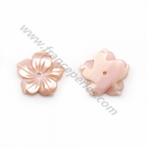 Pink mother-of-pearl 5 petal flower 12mm x 1pc