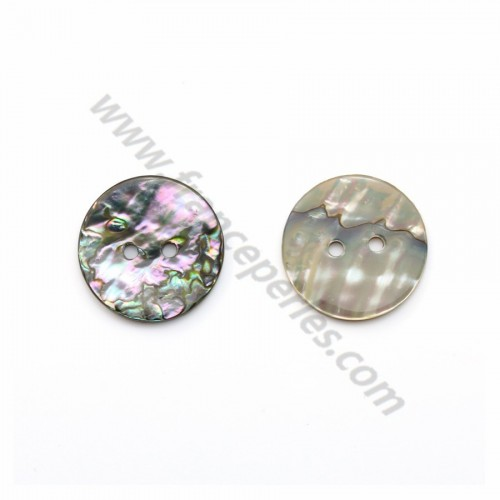 Abalone mother-of-pearl round button 2x20mm x 1pc
