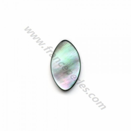 Gray Shell Oval 10x16mm X 5pcs