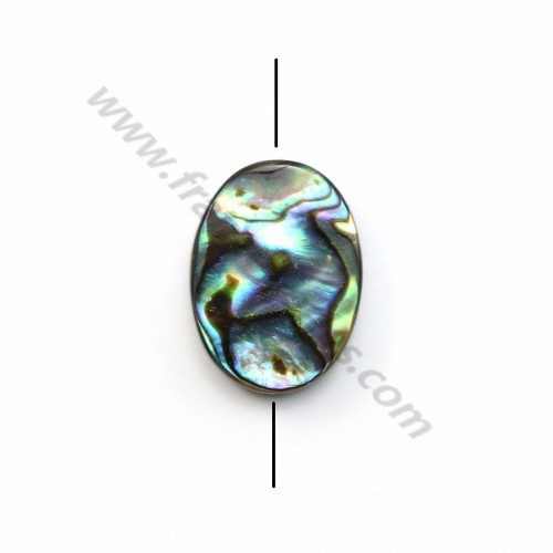 Abalone mother-of-pearl oval beads 13x18mm x 2 pcs