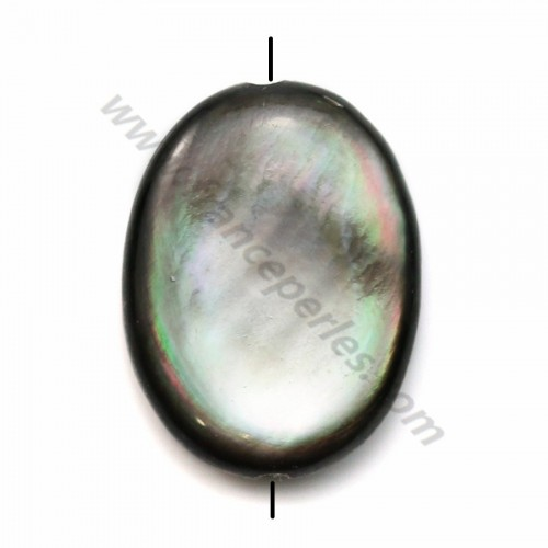 Gray mother-of-pearl bulged oval beads 15x20mm x 2pcs