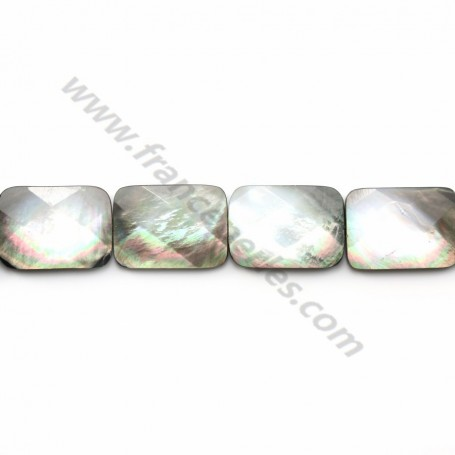 Gray mother-of-pearl faceted rectangle beads on thread 18x25mm x 40cm