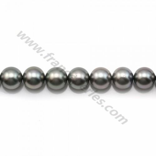 Pearls of Tahiti grey clear round 8.5-9.4mm x 40cm