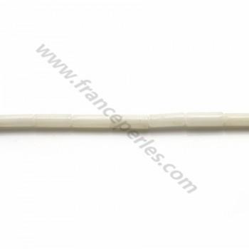 Sea bamboo white tube  2*4mm x 22pcs