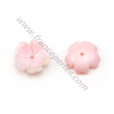 Natural Abalone Shell 15mm the Flower with 5 Leaves x 1 pc