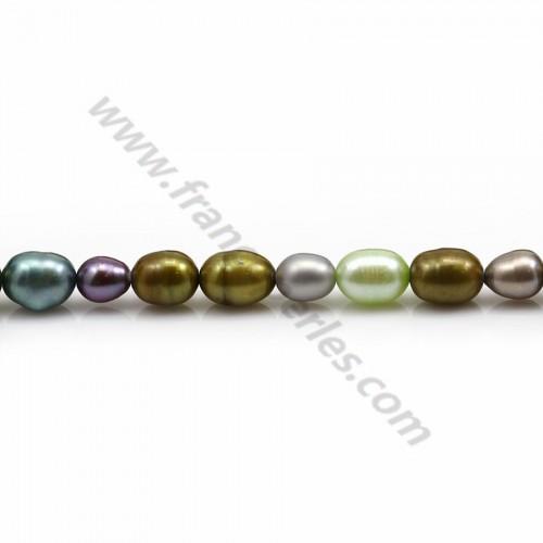 Perle d'eau douce multicolore, de forme ovale x 40cm