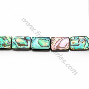 Abalone shell Rectangle13*18mm X 2pcs