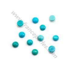 Cabochon Turquoise rond 5mm x 2pcs